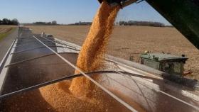 Brasil mantiene la expectativa de cosecha récord: crece un 4,4% contra el año pasado