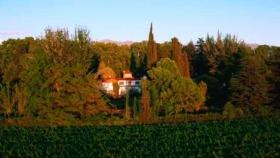 Bodega Trivento consolida su posicionamiento en el mercado de vinos Premium