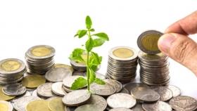 La planificación fiscal en el negocio agrario