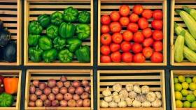 España es el primer país europeo y cuarto del mundo en agricultura ecológica