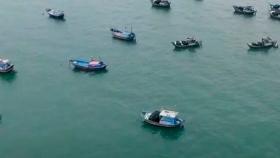 La trazabilidad y la transparencia son herramientas clave para ayudar a eliminar la pesca ilegal