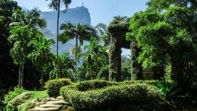 Jardín Botánico de Río de Janeiro: uno de los centros de investigación botánica más importantes del mundo