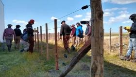 Día Internacional de los Bosques: buscan actualizar legislación sobre el recurso forestal chaqueño