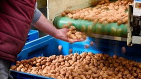 A pesar de la pandemia crecen las exportaciones de alimentos mendocinos