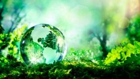 Planmar: un plan que impulsa la educación ambiental