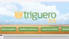 Un tutorial explica cómo agregar certidumbre técnica a la siembra de trigo con tecnología simple