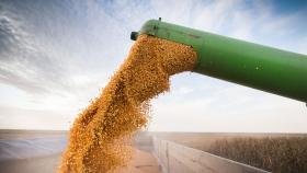 La creciente suba de los fletes afecta el desarrollo de las exportaciones de carne, maní y maíz pisingallo