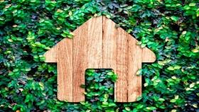 El sector de la celulosa sostenible, clave para la recuperación verde