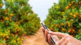 Agrojusto, la startup que va por una tecnificación revolucionaria del agro