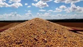 El maíz encabeza una venta histórica para exportación