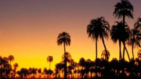 Etapas en la planificación espacial del Turismo en Entre Ríos