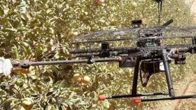 Automatización: ¿se viene la cosecha con drones?