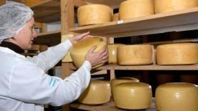 Recomiendan el consumo de quesos autorizados y rotulados