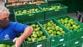 Los bancos de alimentos salen al rescate
