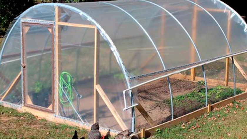 Paso A Paso Cómo Hacer Un Invernadero Casero Y Cultivar Agroempresario Com