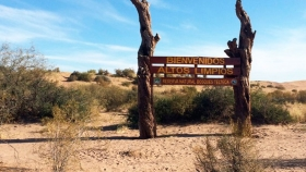 Reserva Telteca, el bosque desconocido