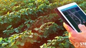 Agricultura de precisión: la revolución de la tecnología profunda está reinventando la agricultura india