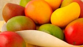El poder del mango