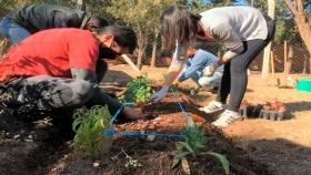 Dos instituciones se suman a la producción agroecológica de alimentos