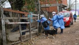 La pandemia expuso la necesidad de generar información sobre el hábitat de cada territorio