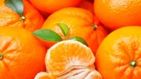Perú: Mandarinas impulsan aumento del 40% en exportaciones de cítricos