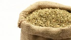 Cooperativa prepara un envío de 1000 kilos de yerba mate argentina a India