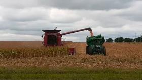 Clave para la economía: la cosecha podría aportar US$ 33,9 mil millones en 2021, un 34% más que el año pasado