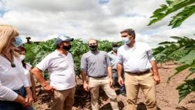Desde el IDRAF fortalecen asistencia a la Agricultura Familiar con proyectos nacionales