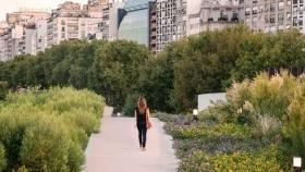 Tendencia: hacia un paisajismo más sustentable, en busca de la biodiversidad