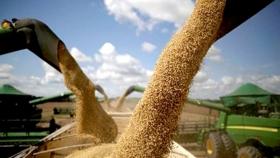 ¿Hasta cuándo las bajas para la soja y el maíz?