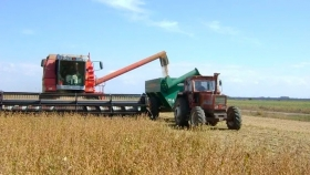 A pesar de la baja de retenciones y la suba en el precio de la soja, el agro no aumentó la liquidación