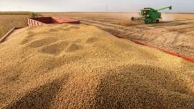 Granos: el Gobierno va por las 200 millones de toneladas