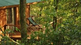 Vacaciones en la selva: cinco increíbles hospedajes misioneros
