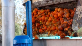 La energía eléctrica de las naranjas