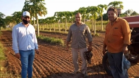 Tres Isletas quiere desarrollar un polo frutihortícola