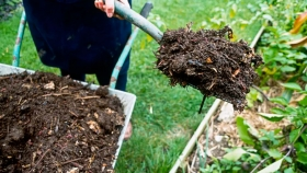 Compostaje porcino para nutrir suelos periurbanos