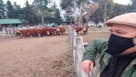 Cabañas ganaderas: exitoso sitio que acerca la oferta y la demanda