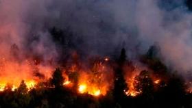 El daño que provocó el incendio en el Bolsón es muy grave