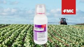 Insecticidas: FMC ya fabrica en la Argentina