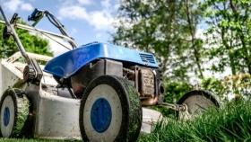 ¿Qué herramientas necesitas para hacer trabajos de jardinería profesional?