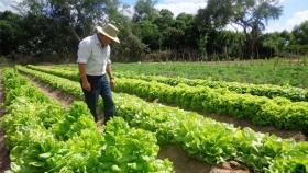 Buenos Aires: la provincia avanza en la implementación de Buenas Prácticas Agrícolas