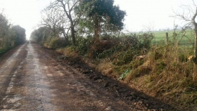 Entre Ríos: piden que se disuelva Vialidad por la falta de mantenimiento de los caminos rurales