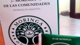 En Salta, promueven la elaboración artesanal de té de moringa