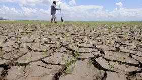 El riesgo climático, una amenaza latente para los ciclos agrícolas
