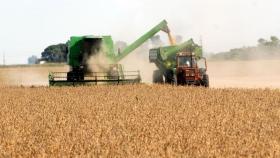 El USDA recortó producciones, mientras el mundo entra en tensión por Afganistán