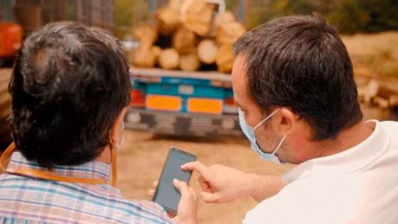 Los desafíos en el sector forestal para incorporar la digitalización y el blockchain