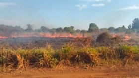 Falta de recursos hídricos agrava el combate de los incendios en Misiones