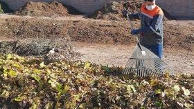 Compostaje: las acciones de Godoy Cruz para fomentar una práctica que mejora el ambiente y aprovecha los residuos orgánicos