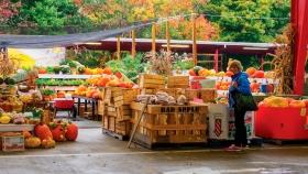 Los mercados regionales de Carolina del Norte