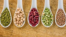 China abrió su mercado a las legumbres argentinas
